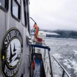 Telegraph Cove, Canada - Stubbs Island Whale watching tour