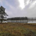 Yellowstone National Park, Wyoming, USA - Yellowstone Lake wake up