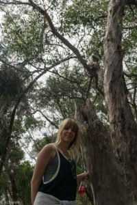 Kangaroo Island, Australia - Flinders Chase National Park - Heritage Walk