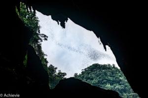 Borneo, Malaysia - Mulu - Gunung Mulu National Park - Deer Cave